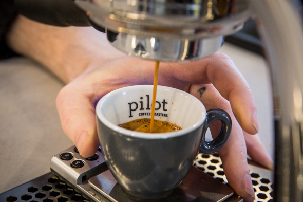 pilot coffee roasters toronto