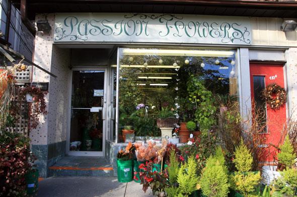 Passion Flowers Toronto