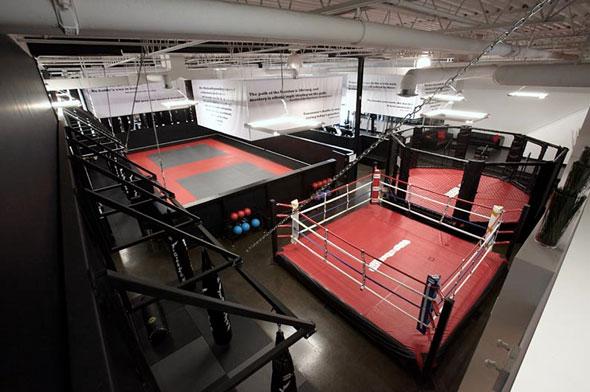 Revolution MMA Toronto