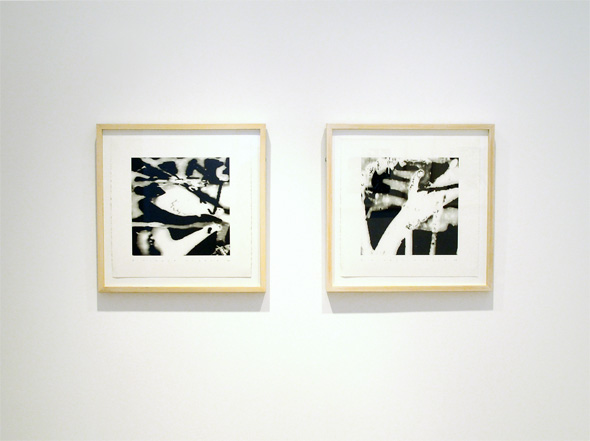 Alison Smith Gallery Nikola