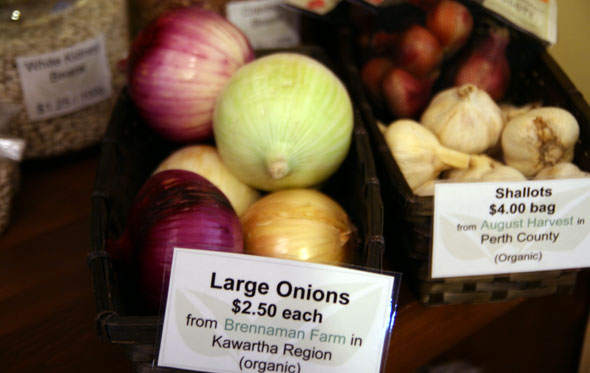 Culinarium Onions