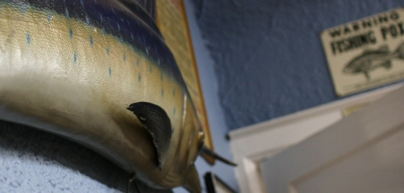 Penrose swordfish