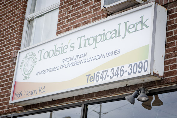 Toolsies Tropical Jerk