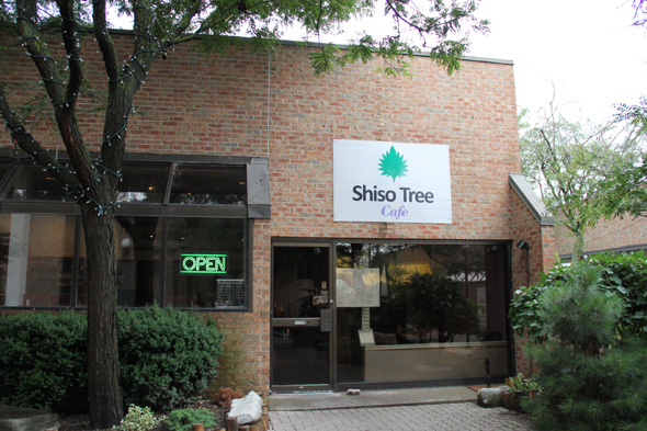 Shiso Tree Cafe