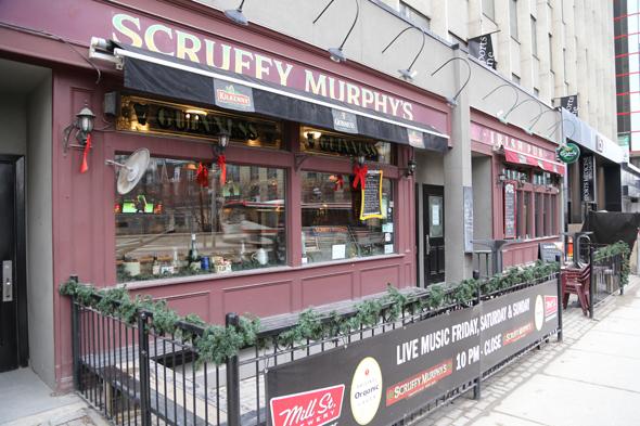 Scruffy Murphys