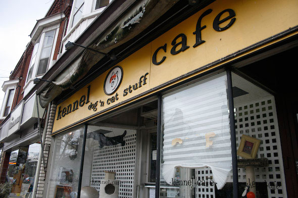 Kennel Cafe