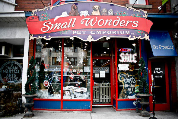 Small Wonders Pet Emporium