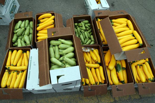 20071006_zucchini.jpg