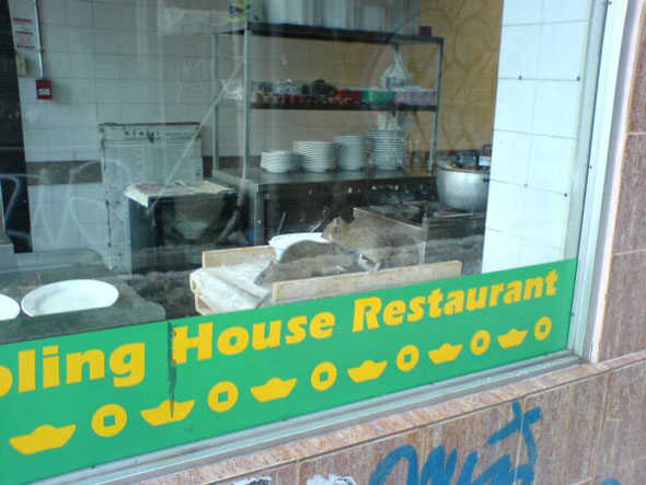 Dumpling House Rats