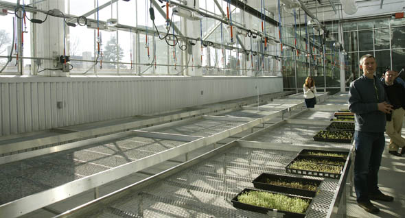 Artscape Wychwood Barns greenhouse