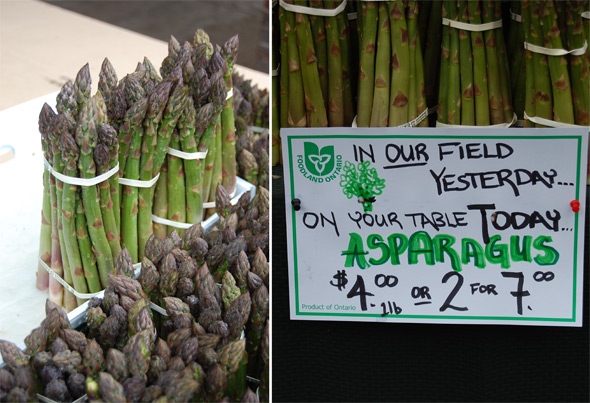 ontario asparagus