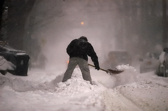 Snowy Toronto