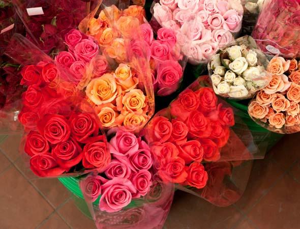 Florists Davenport Toronto