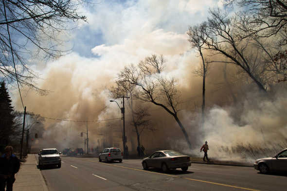 High Park Controlled Burn