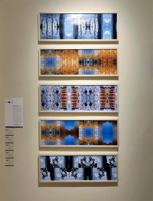 2011514-gladstone-mafalda-silva.jpg