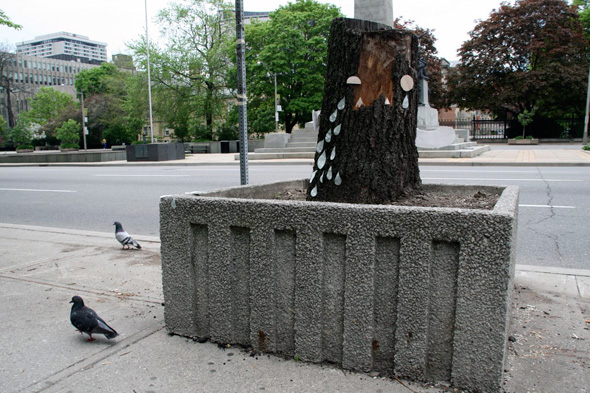 2011523-street-planter-stump.jpg