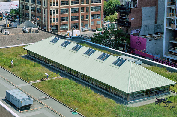 Mec Green Roof