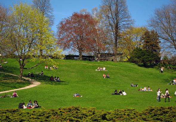 Best Parks Picnic Toronto
