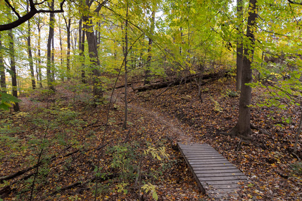 Hiking Trails Toronto