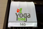 Yoga Tree Dowtown