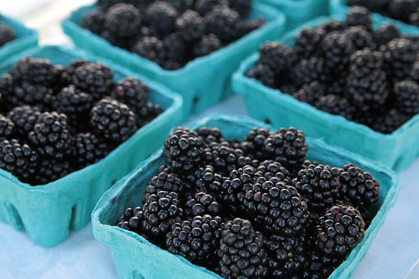 sorauren farmers market toronto