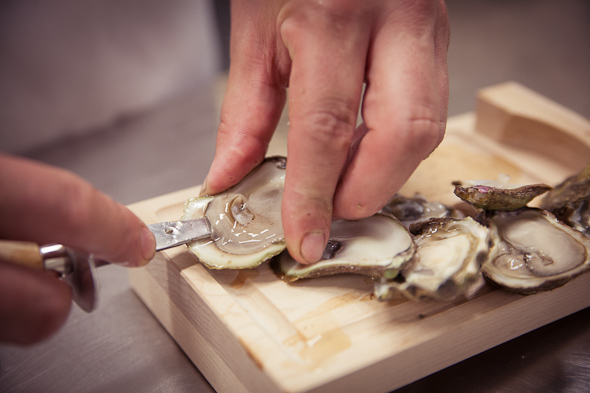 toronto oyster boy chef