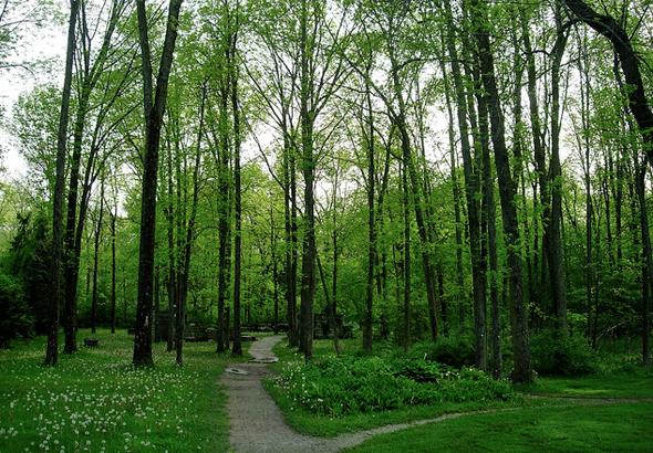Guildwood Park Toronto