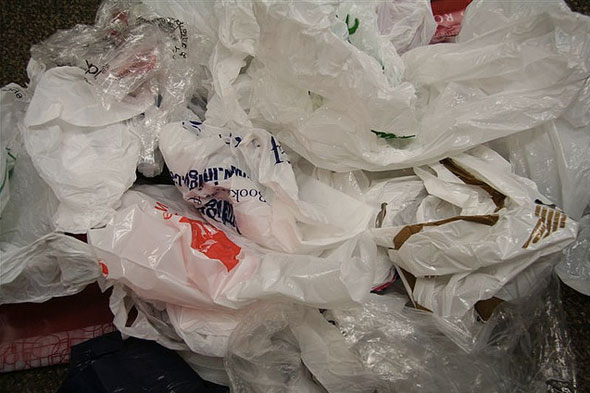 toronto bag ban