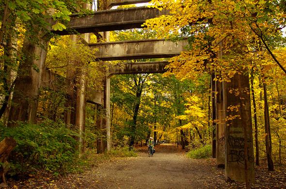 2012119-fall11.jpg