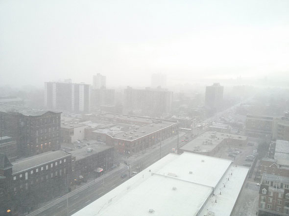 toronto whiteout