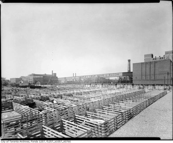 201393-canada-packers-stockyards-1940s.jpg