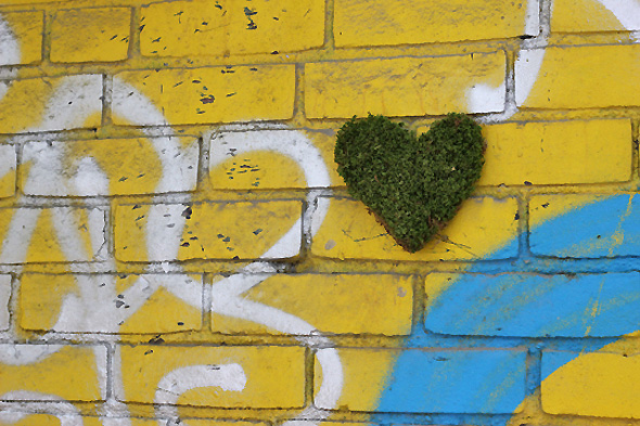 Moss grafitti