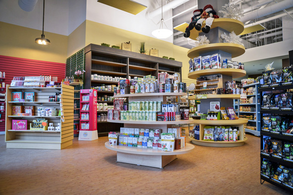 Health Food Store At Yonge And College