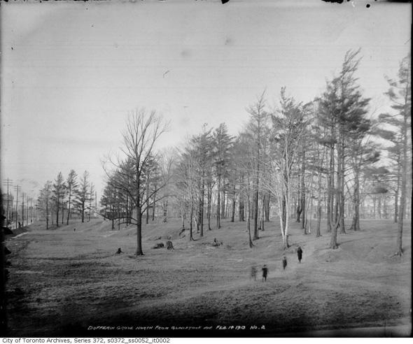 201321-dufferin-grove-park-1913-ed2.jpg