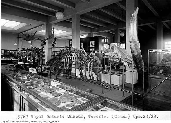 toronto royal ontario museum rom