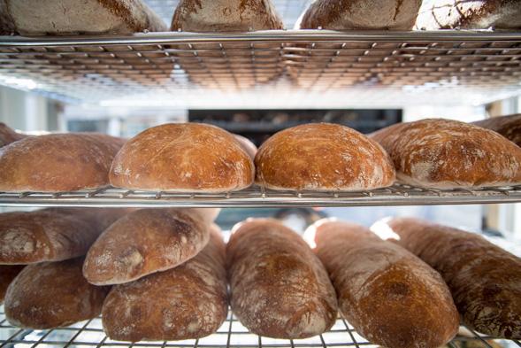 bakery kensington
