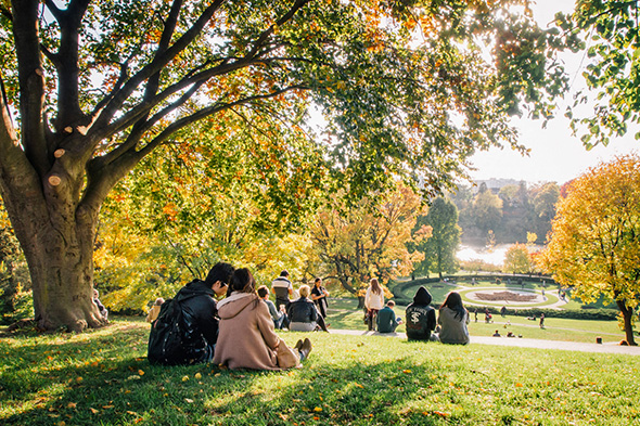 Fall events toronto