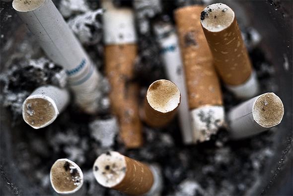 flavoured tobacco ban