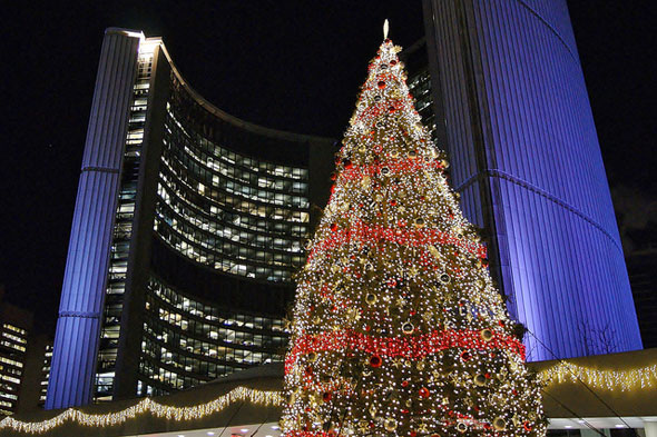 Attractive The Story Of The Toronto City Hall Christmas Tree