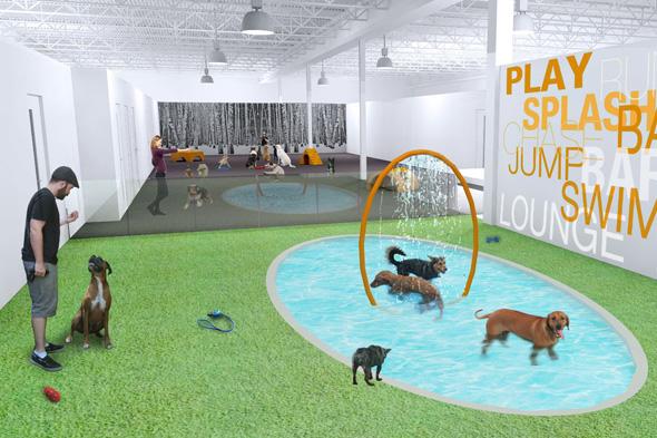 Dog Kennels In Pearson Ga