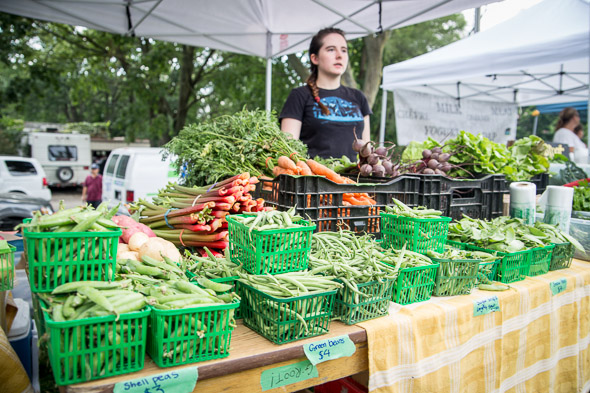 farmers markets toronto