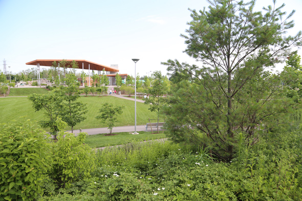 new park toronto