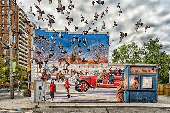 pigeons toronto
