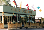 Black Dog Pub