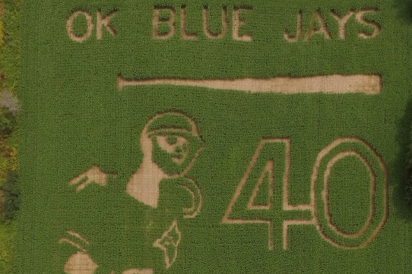 New Brunswick farm carves out massive Bautista bat flip corn maze