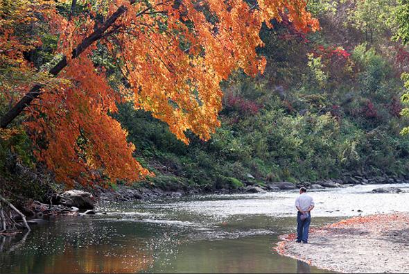 fall hikes toronto