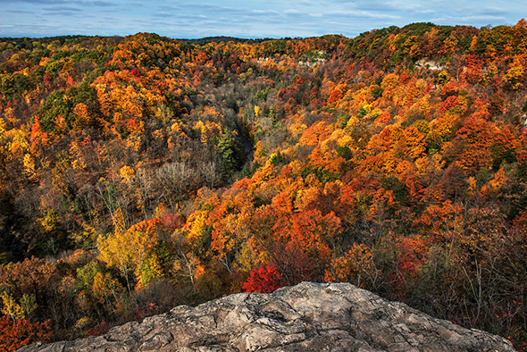 lookouts fall colours ontario