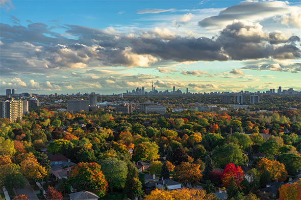 fall colours toronto