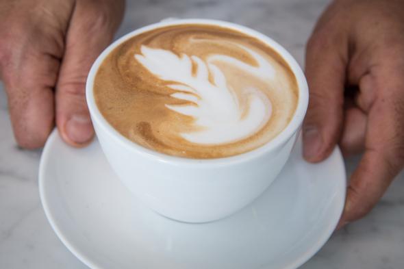 oakwood espresso toronto