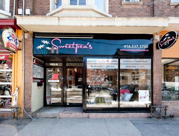 Sweetpeas Toronto